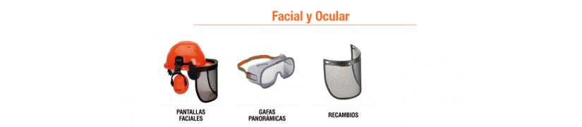 Facial y Ocular